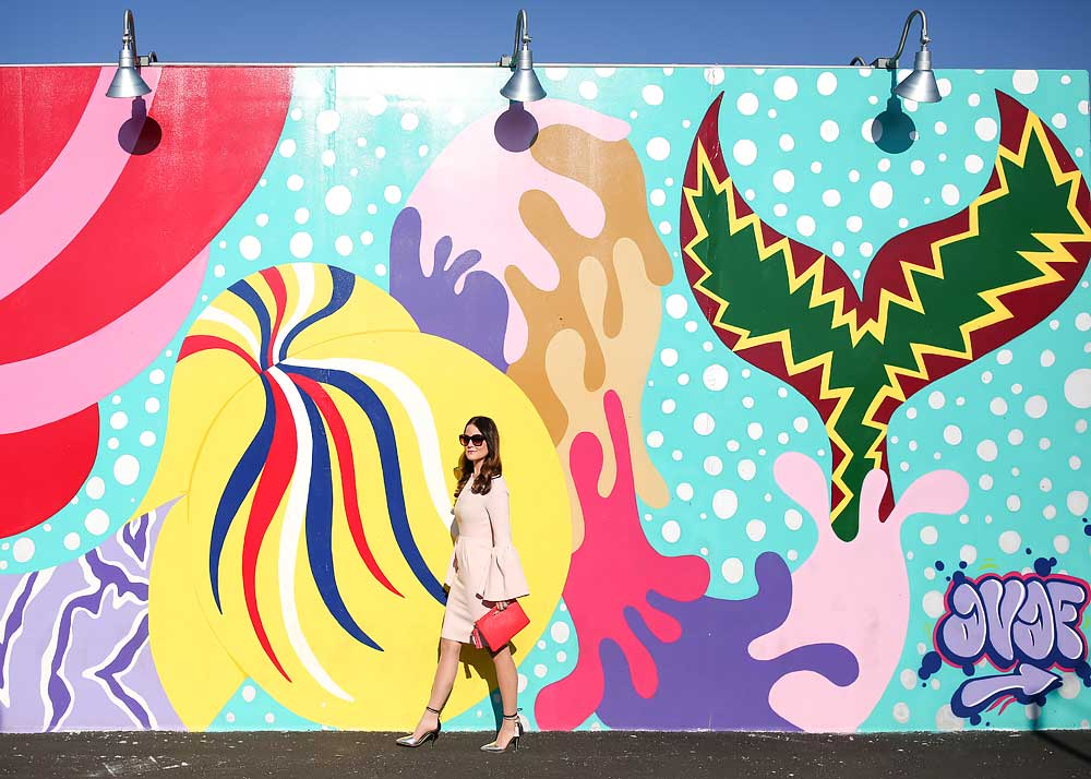 Coney Island Arts Walls