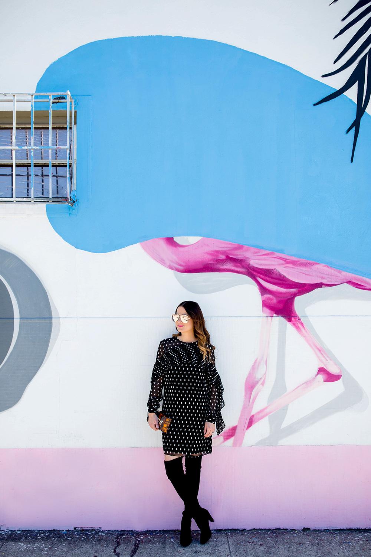 Flamingo Mural Miami Wynwood