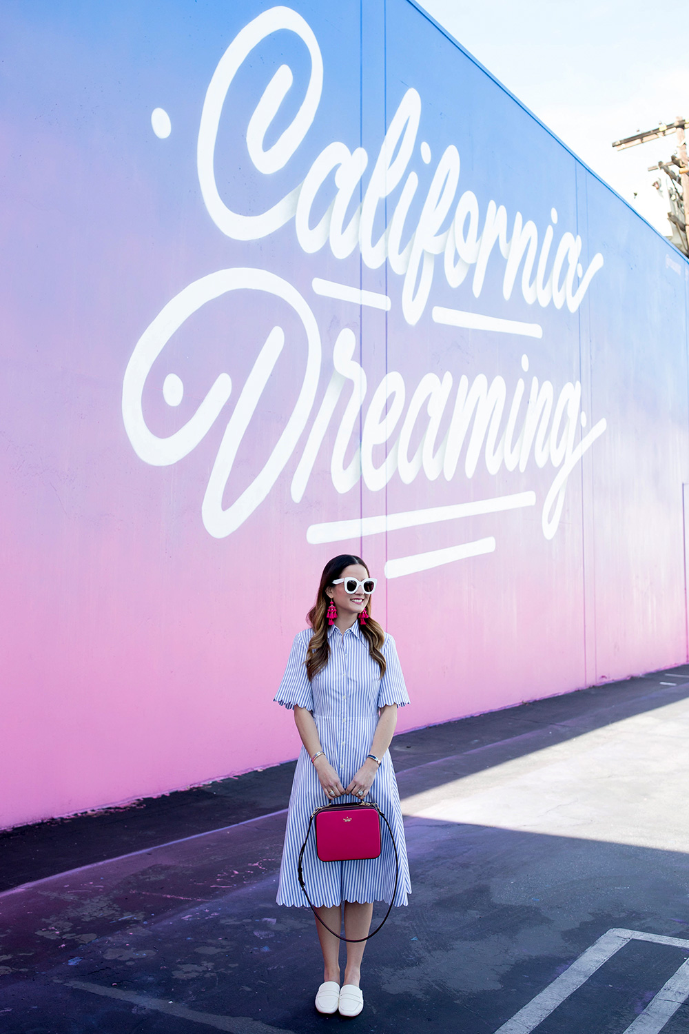 Los Angeles California Dreaming Mural
