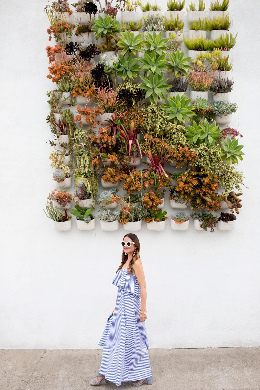 Pigment San Diego Plant Wall