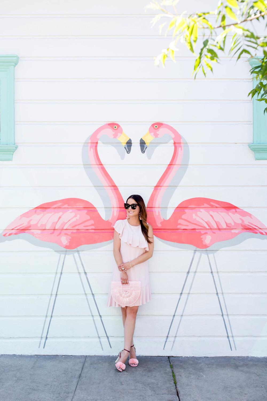 San Francisco Pink Flamingo Mural Wall