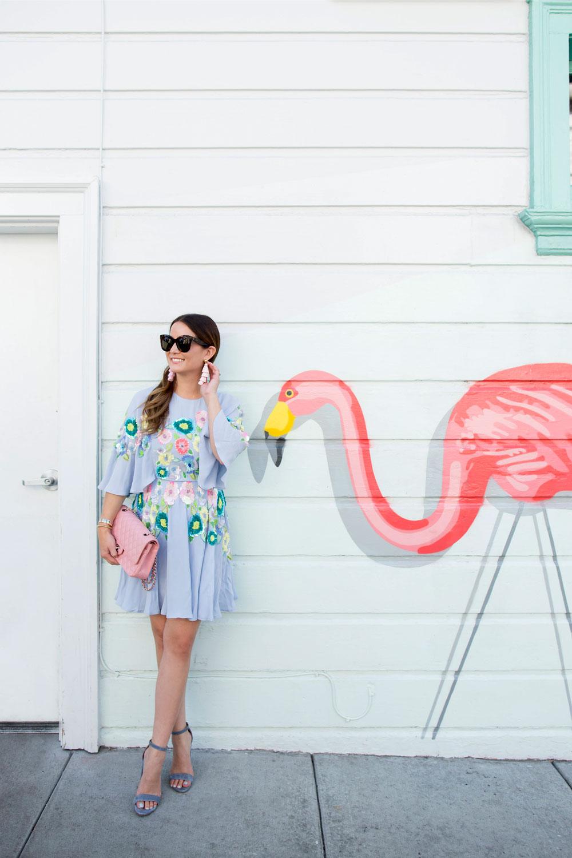 San Francisco Flamingo Mural