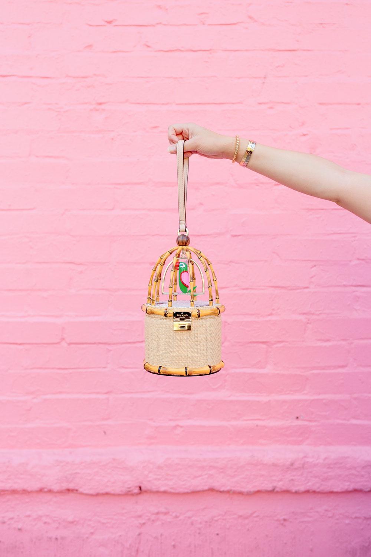 Kate Spade Parrot Cage Bag