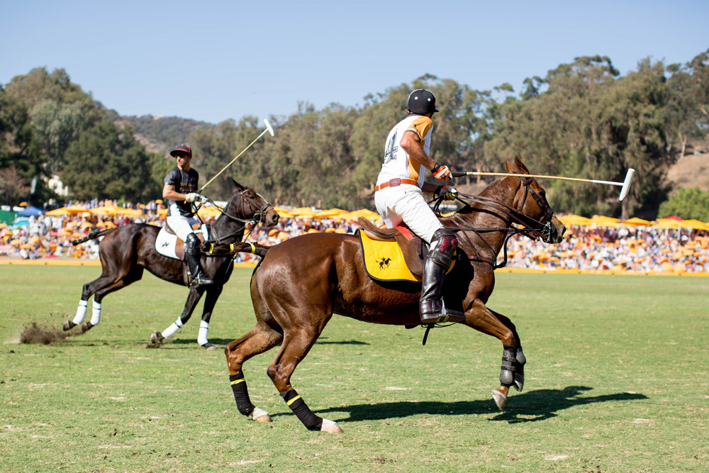 Polo Match Action Shots