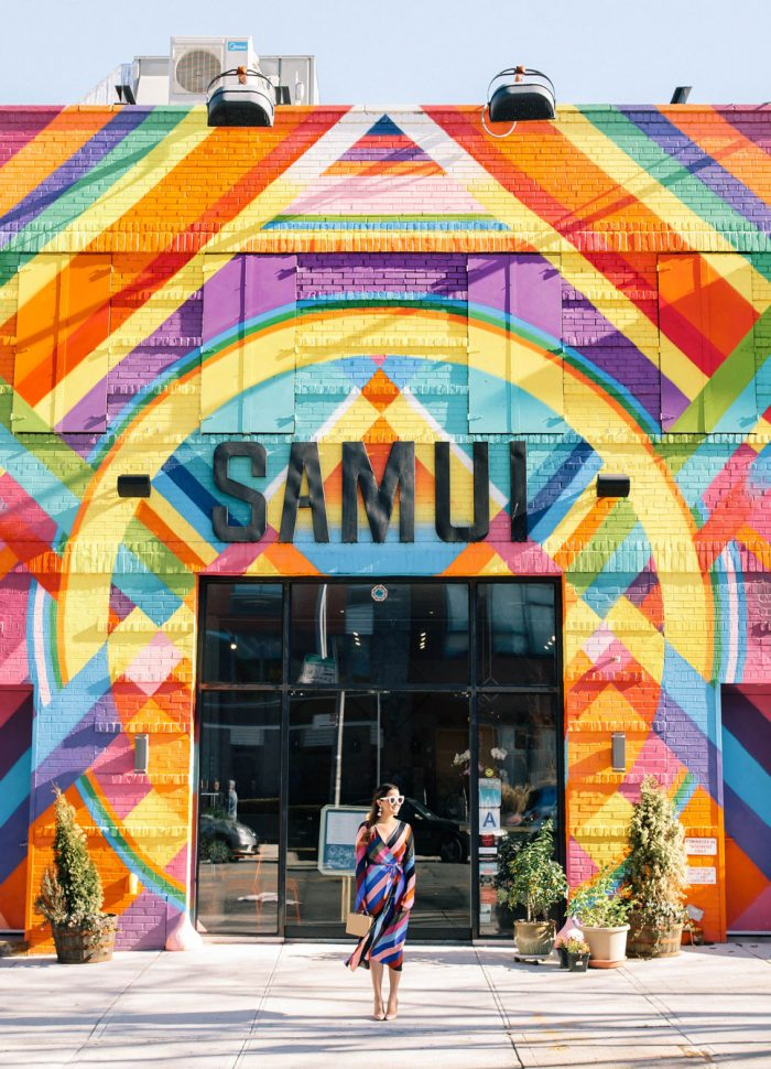 Samui Brooklyn Multicolor Mural