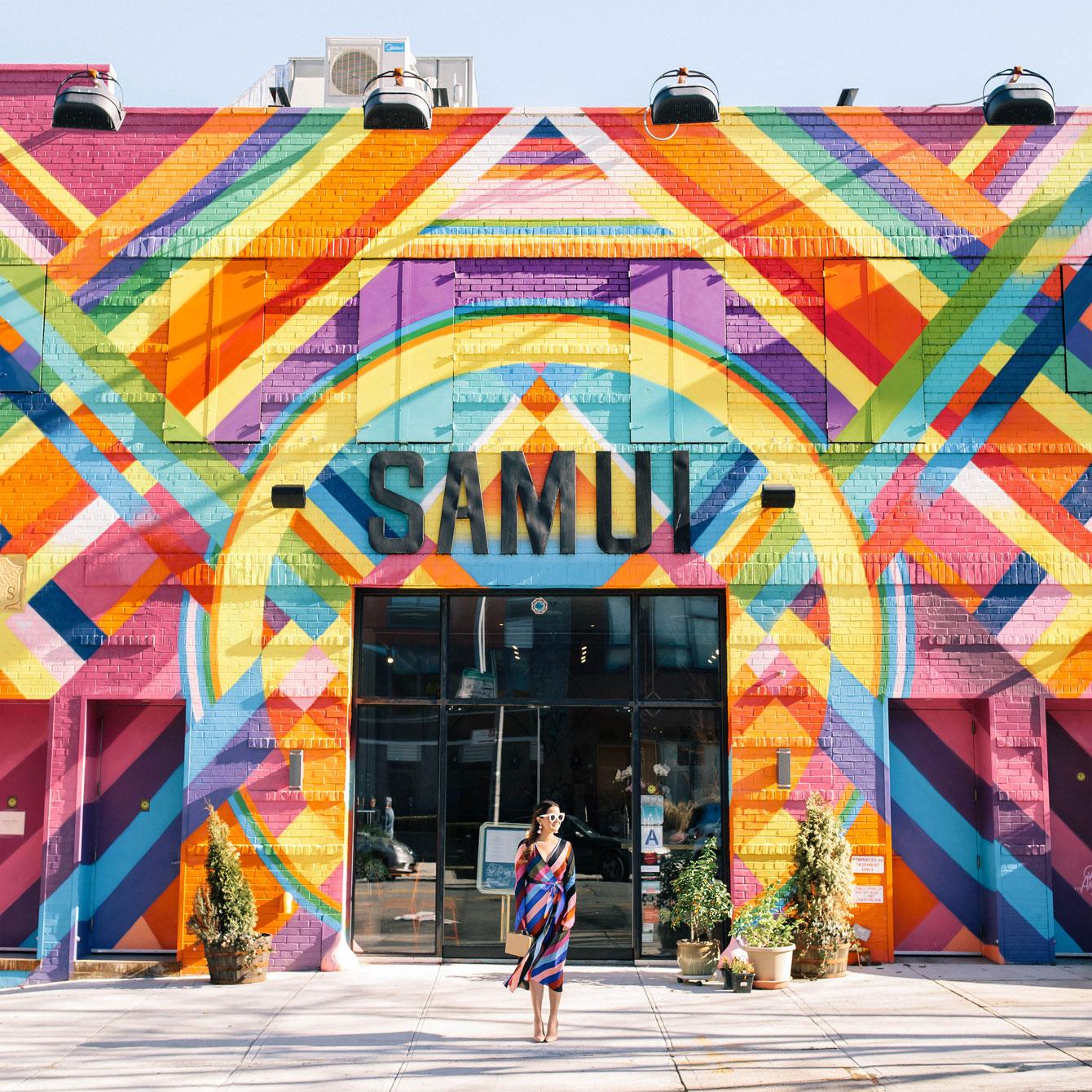 Samui Brooklyn Multicolor Mural