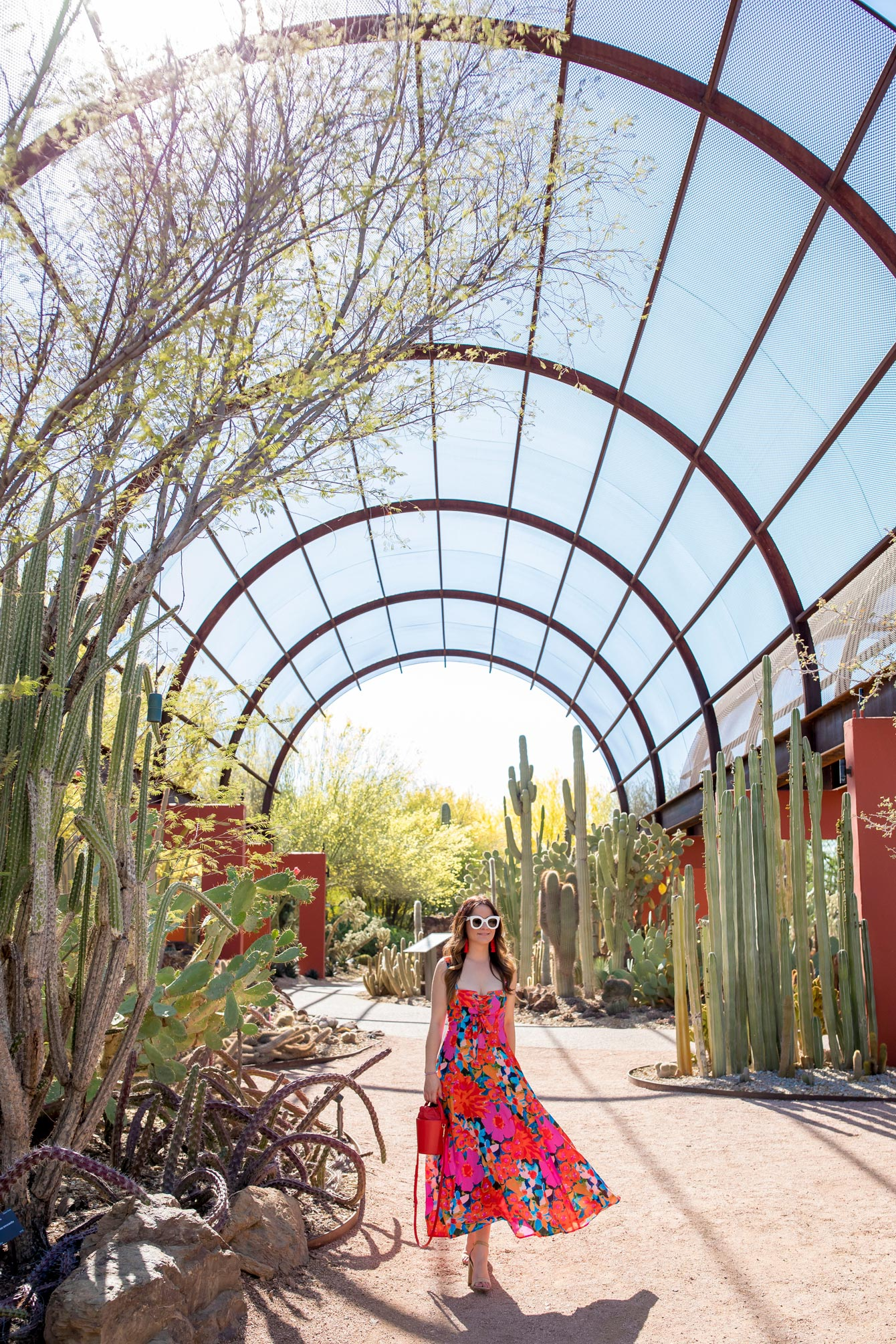 Jennifer Lake Scottsdale Botanic Garden