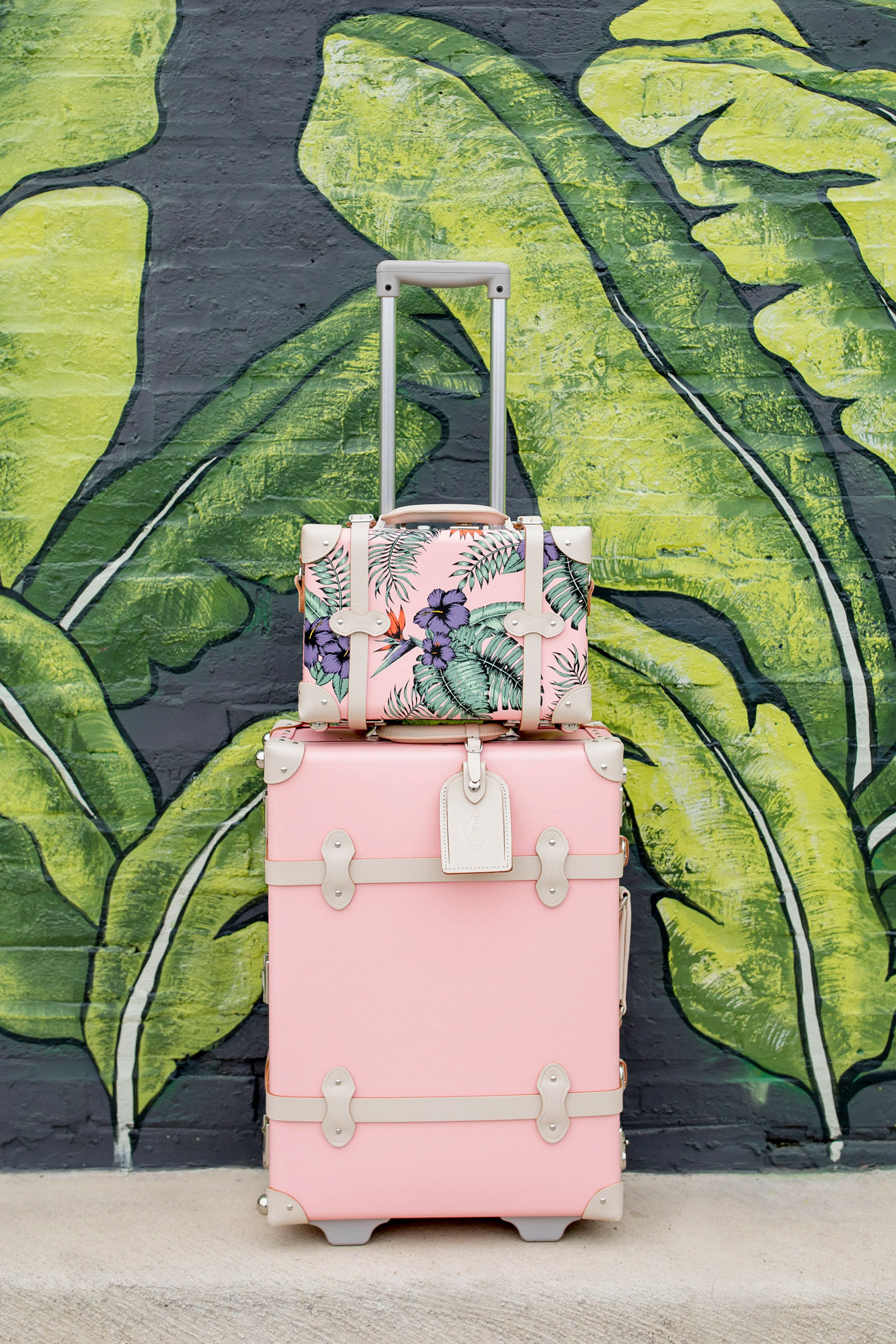 SteamLine Pink Luggage