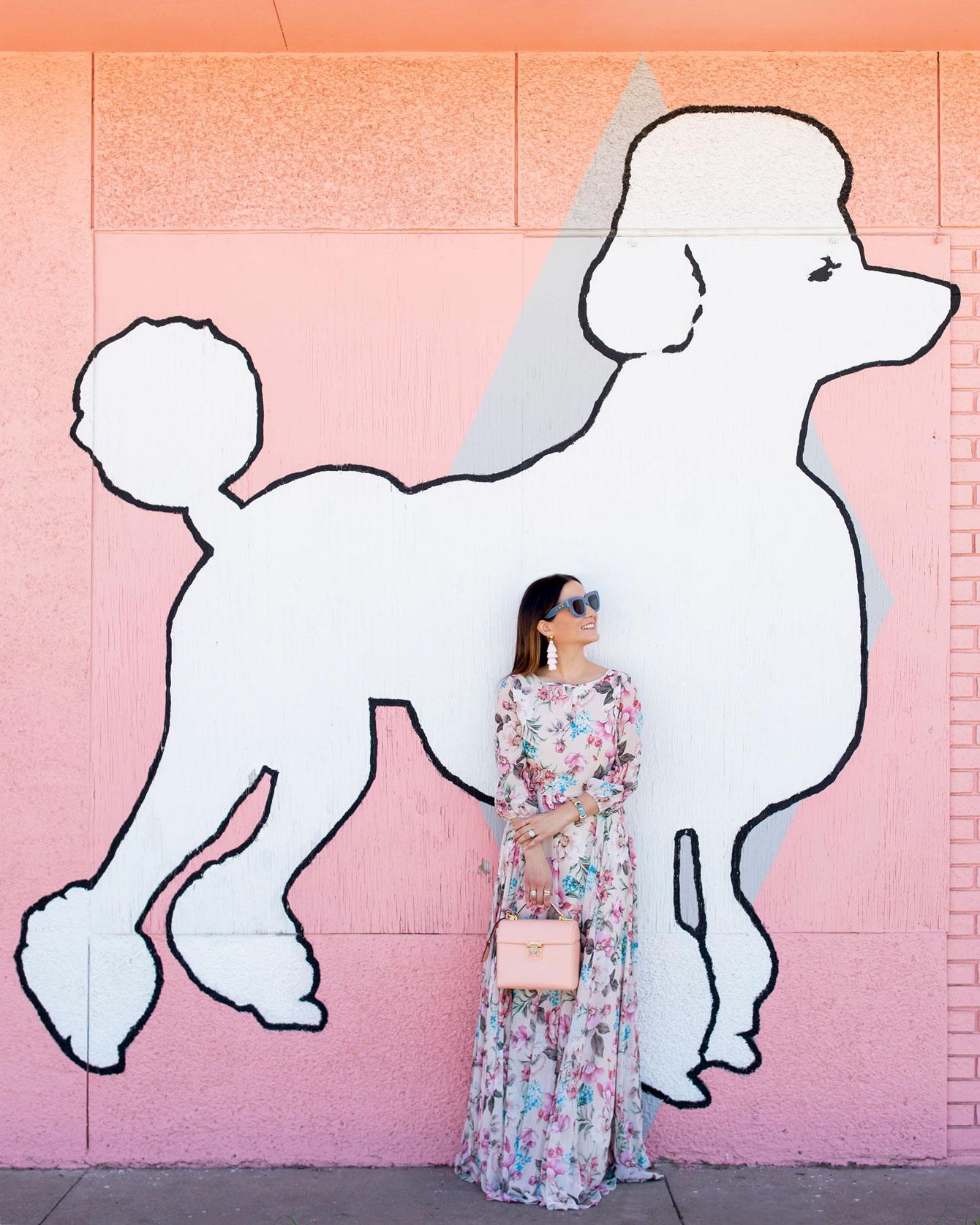 Pink Poodle Mural Austin