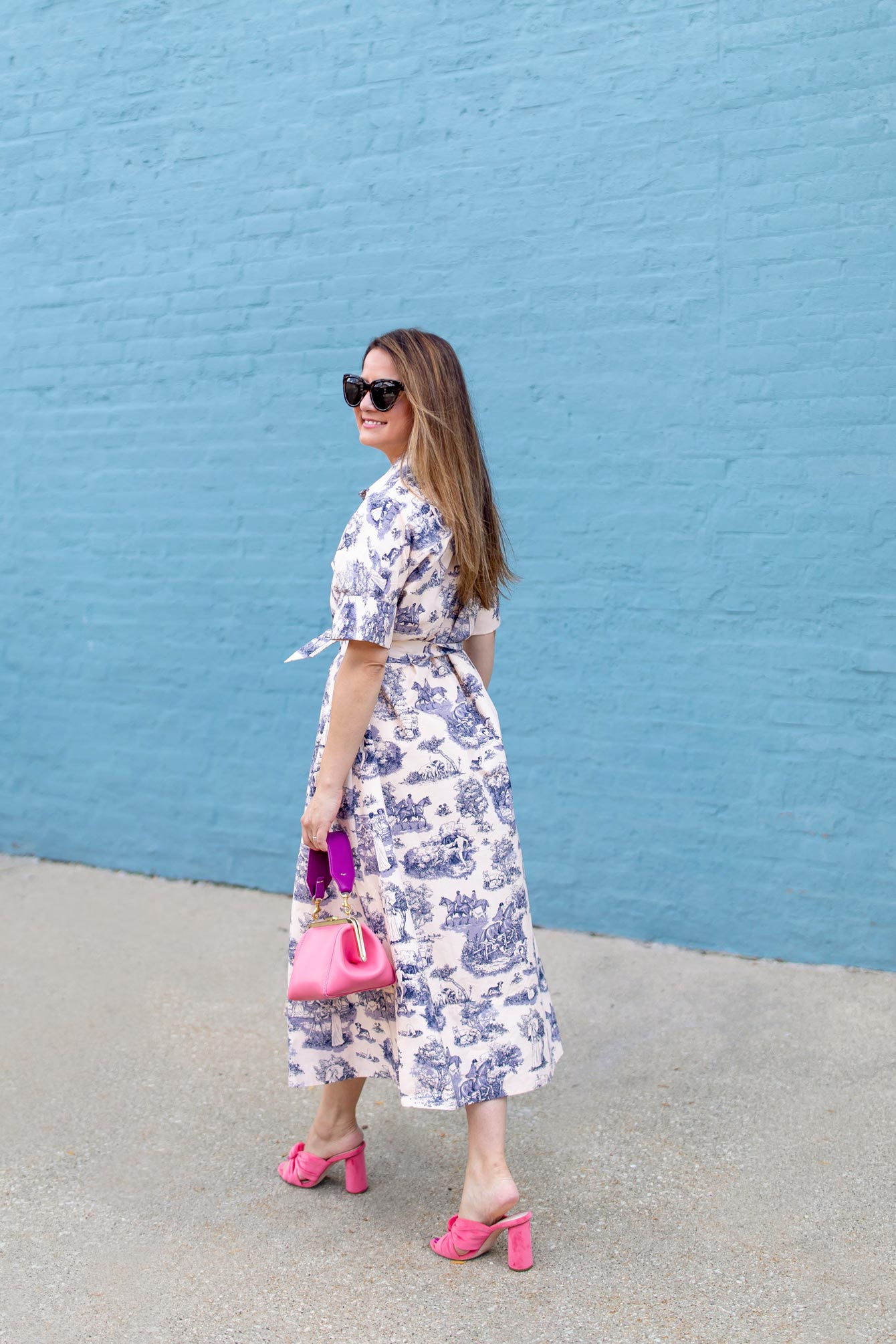Blue Toile Shirtdress