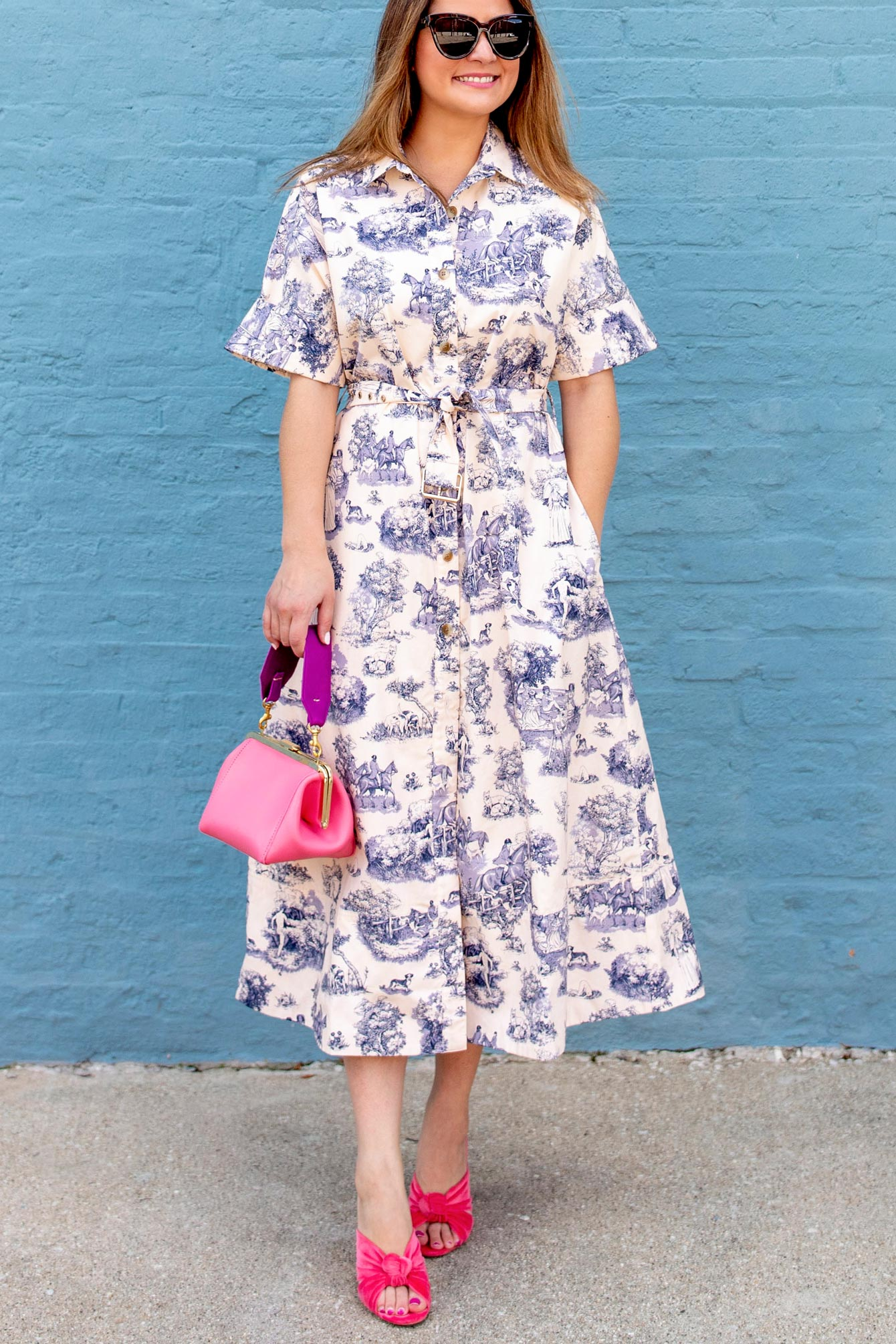 Rachel Antonoff Toile Shirtdress