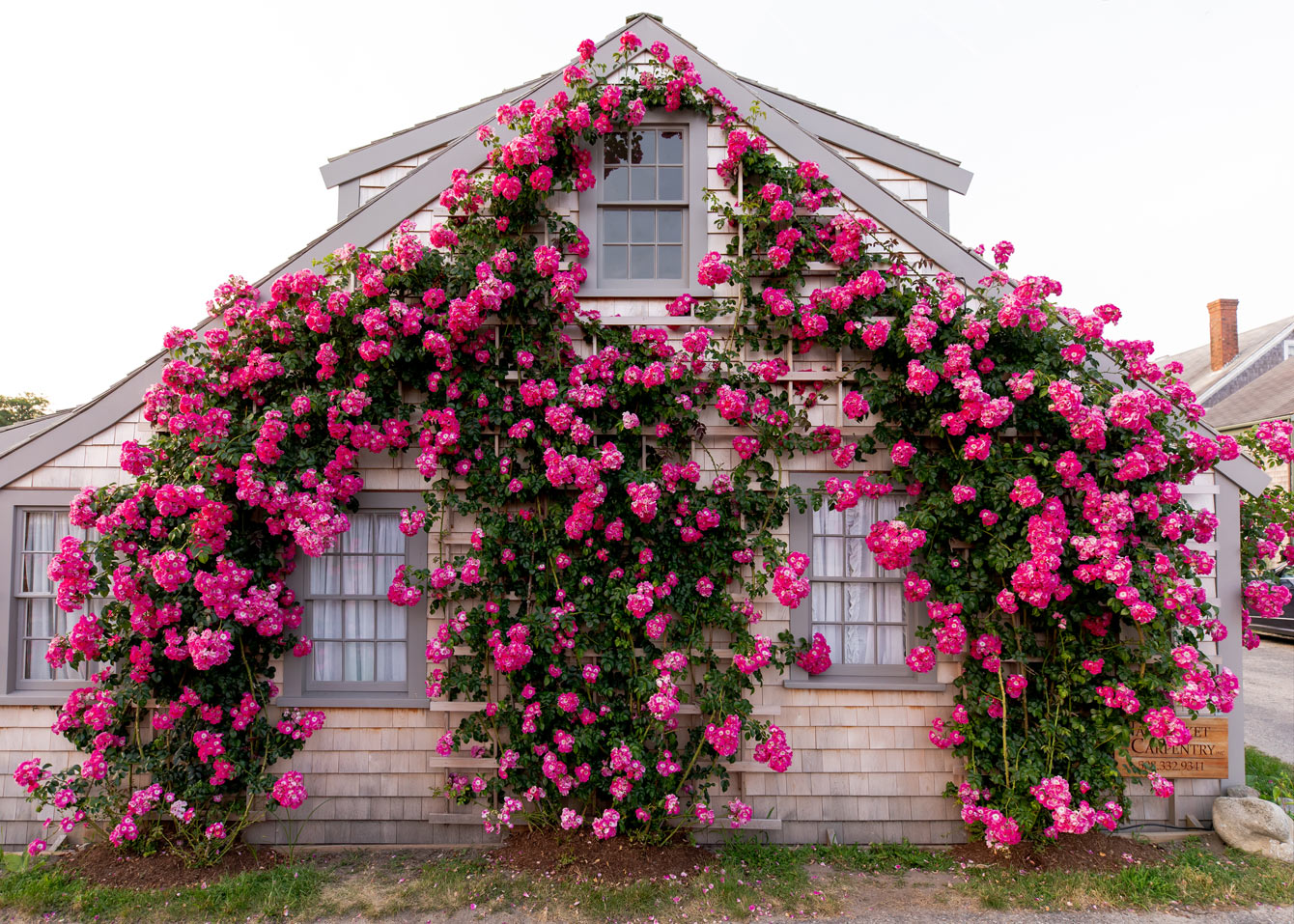 Rose Covered Cottage Sconet Nantucket