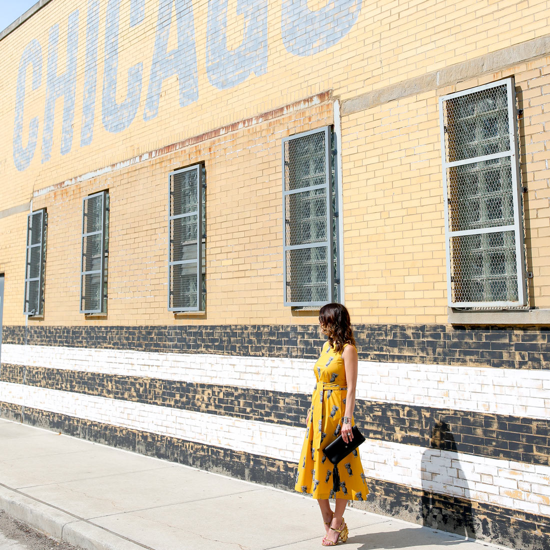 Goose Island Chicago Stripe Mural