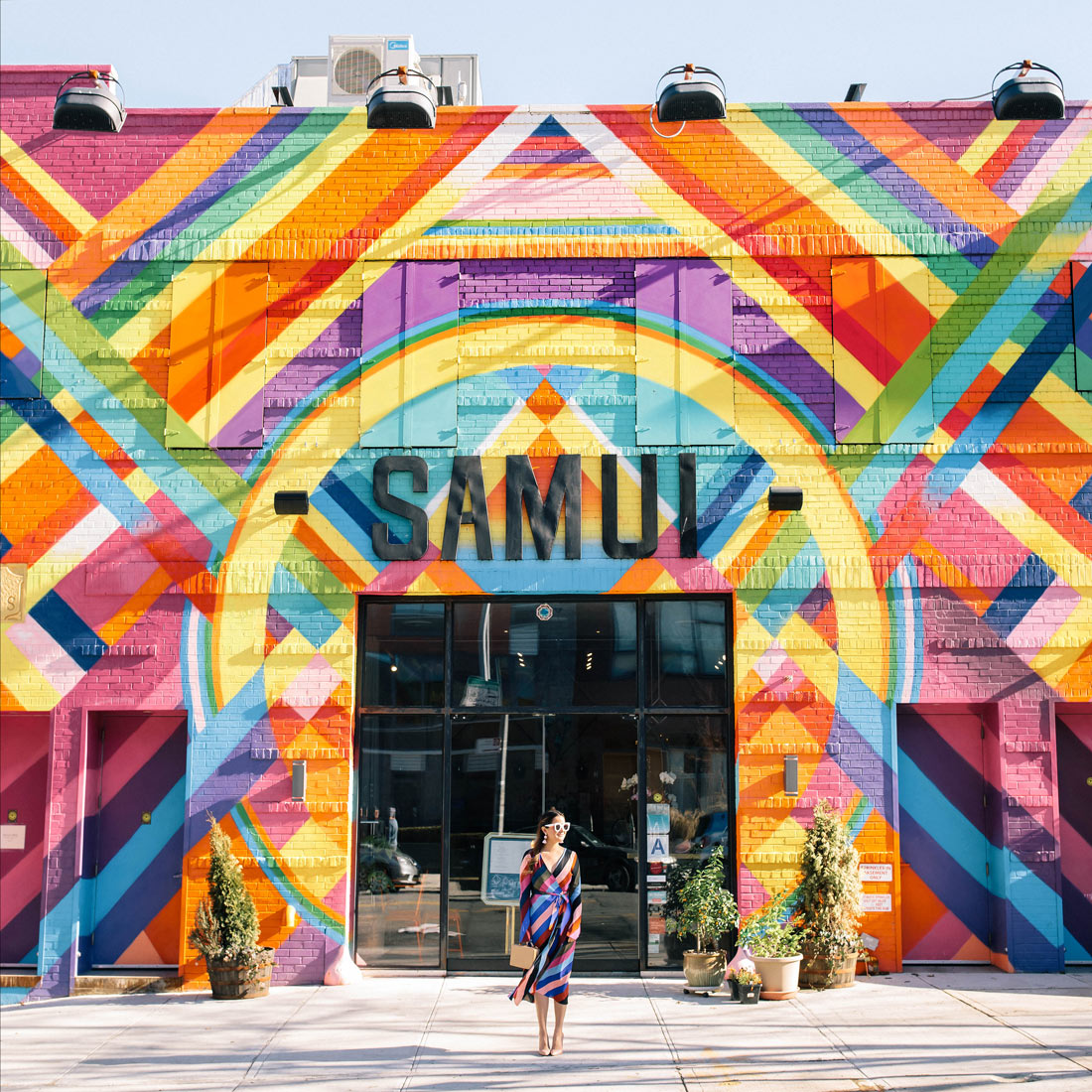 Samui Colorful Building Brooklyn New York
