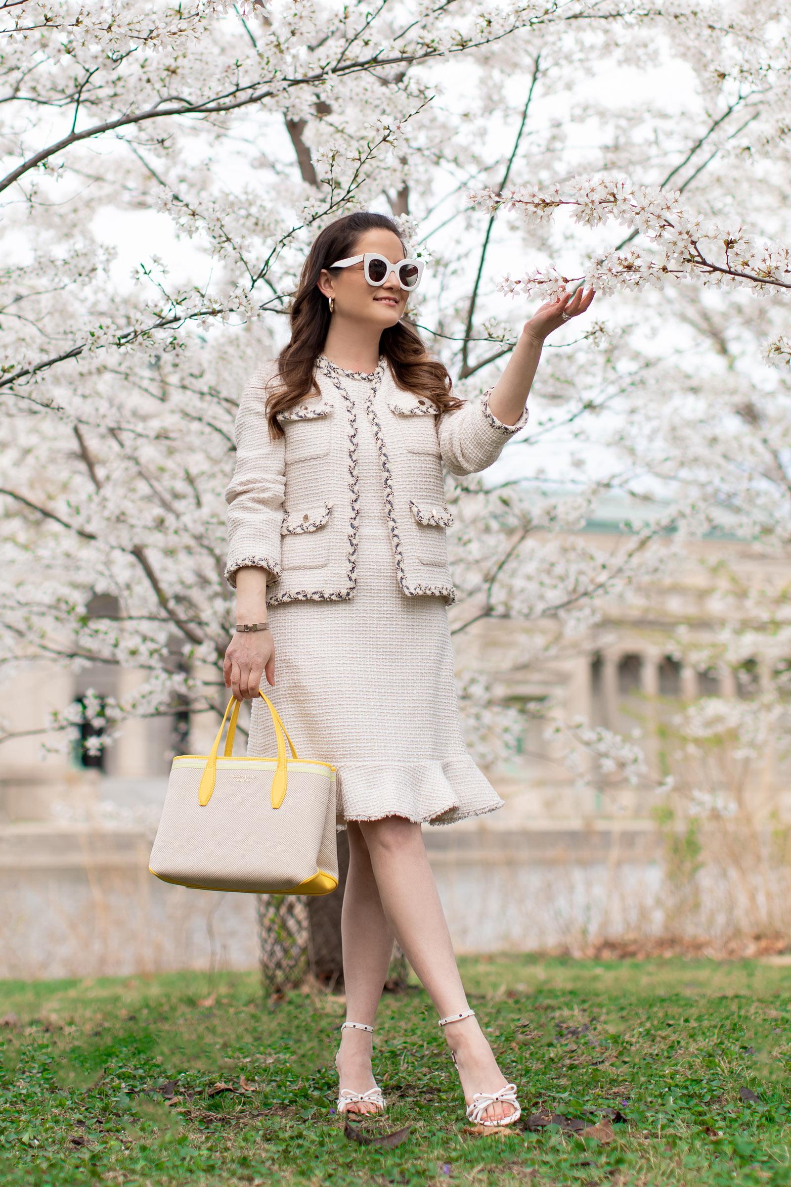 Chicago Cherry Blossom Trees