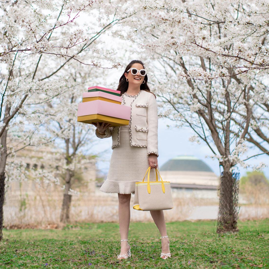 Chicago Cherry Blossoms
