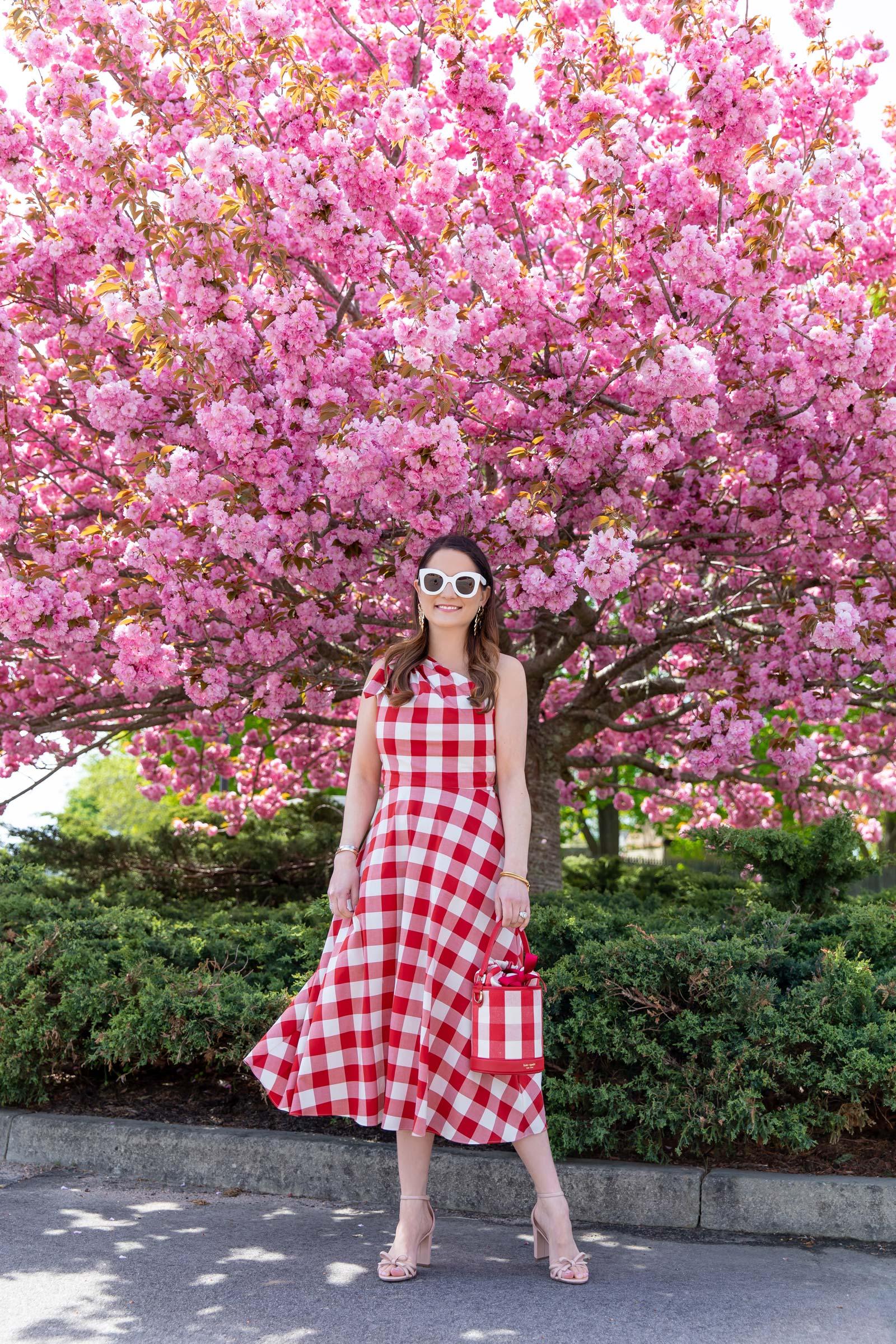 Rhode Island Pink Trees