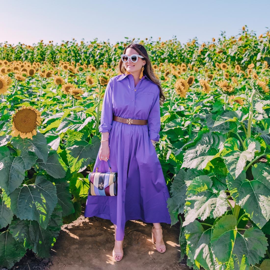 jennifer lake purple shirtdress