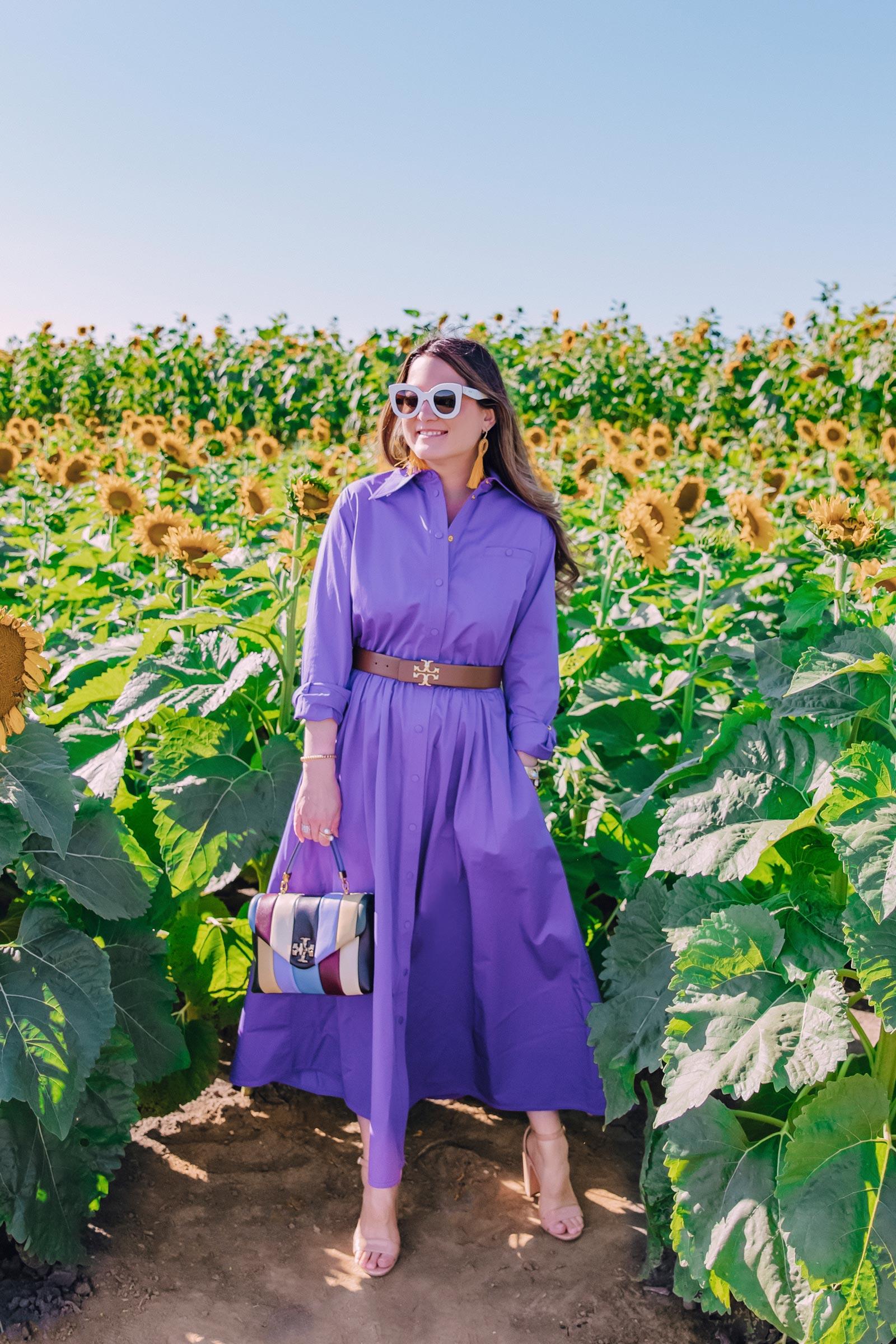 tory burch purple shirtdress